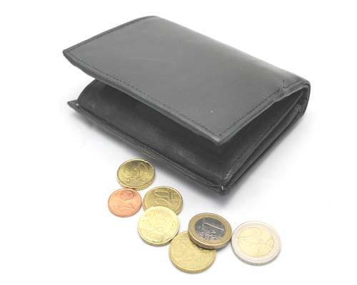 wallet purse - Ekaansh Astro (#ekaansh)